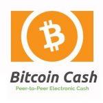 仮想通貨のビットコインキャッシュとは?時価総額や問題点を紹介!