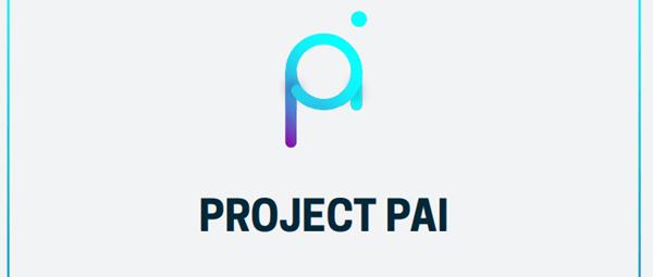 プロジェクトPAI