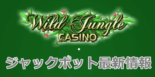 ワイルドジャングルカジノのジャックポット最新情報