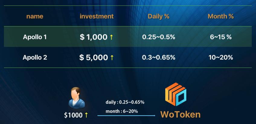 wotokenの投資金額による収益リターン