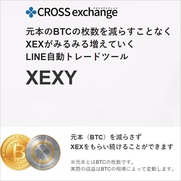 XEXY(ゼクシー)クロスエクスチェンジ専用の自動ツール